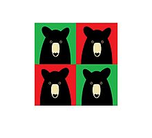 BLACK BEAR ON RED & GREEN Photographic Print