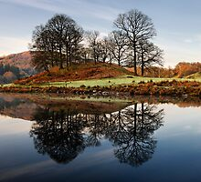 Morning Reflections - Elterwater by Chris McIlreavy
