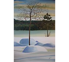 SOLD - Winter By the Lake  Photographic Print