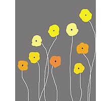 Yellow Poppies Photographic Print