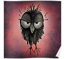 Funny Irritable Owl Poster