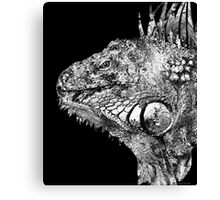Black And White Iguana Art - One Cool Dude 2 - Sharon Cummings Canvas Print