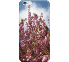 Pink Tree Blossoms iPhone Case/Skin