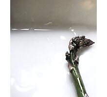 Asparagus Spear Photographic Print