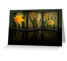 Winter Daffodils  Greeting Card