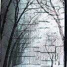 endless winter by charitygrace