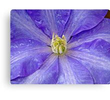 Bathed by nature Canvas Print