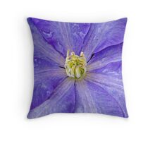 Bathed by nature Throw Pillow