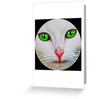 Green Eyes Cat Greeting Card