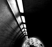 Lights Will Illuminate The Exit by Josephine Pugh