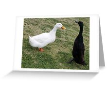Chatting ducks Greeting Card