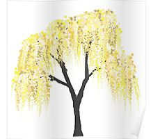 Yellow Willow Poster