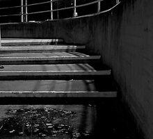 Steps  by Shane Viper