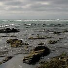 Rocky Shore by bicyclegirl