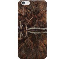 Willow and Water iPhone Case/Skin