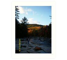 New Hampshire Foliage Art Print