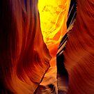 Arizona by LudaNayvelt