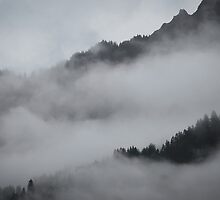 Misty Mountains by Laura Sanders