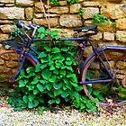 France by Christine Oakley