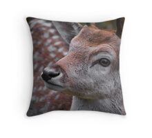 Northern Ontario Deer Throw Pillow