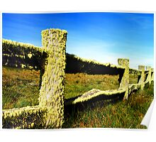 Lichen Fence beyond Licola, High Country, Vic., Australia Poster
