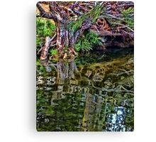 Reflections - Turon River Canvas Print
