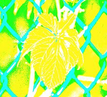 Tropical Chain Link Abstract by Gilda Axelrod
