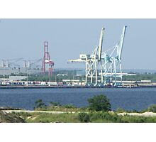 Cranes Connecting Continents Photographic Print