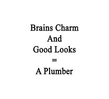 Brains Charm And Good Looks = A Plumber  by supernova23