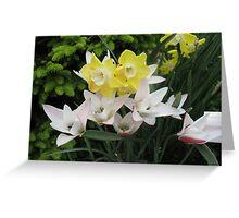 Spring Scene in White Greeting Card