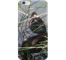 Two Ducks iPhone Case/Skin