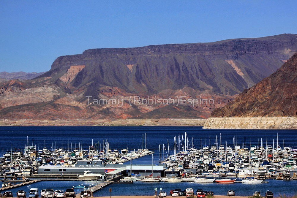 Lake Mead Marina by Tammy  (Robison)Espino