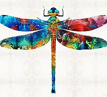 Colorful Dragonfly Art By Sharon Cummings by Sharon Cummings