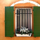 Rousillon window and shutters by Eros Fiacconi (Sooboy)
