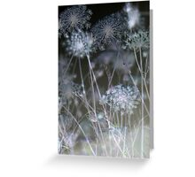 Seeing Stars Greeting Card