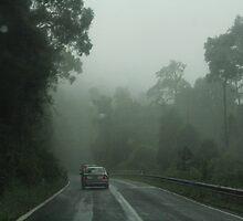 Heading for Dorrigo  by myraj