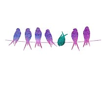 Watercolor birds on a wire by swannonthefarm