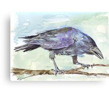 Crows are messengers Canvas Print
