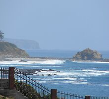 From Laguna to Dana Point Headlands, California by Joni  Rae