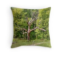 The Cycle of Life Throw Pillow