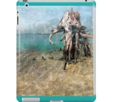 Rising Tides and Ebbing Waters iPad Case/Skin