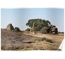 Rock Formations,  Kopjes in Serengeti National Park, Tanzania Poster