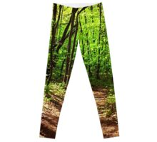 Nature Art Leggings