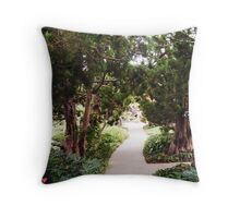 Path to Self Realization Throw Pillow