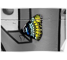 Urban Butterfly Poster