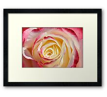 Whipped Strawberries And Cream Framed Print