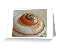 She sells Snail Shells by the Sea Shore  Greeting Card
