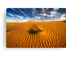 Dune in morning light - perry sand dunes Canvas Print