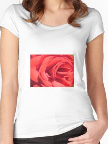 red rose flower close up photography Women's Fitted Scoop T-Shirt