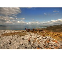 Burren Donkeys Photographic Print